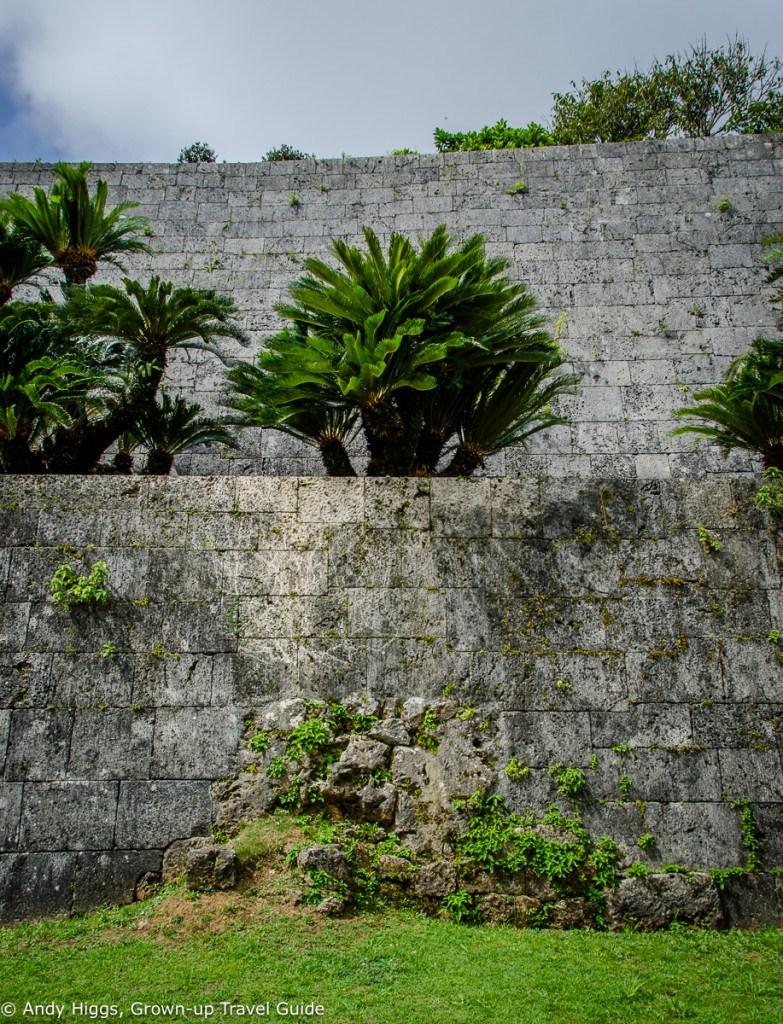Shuri original wall