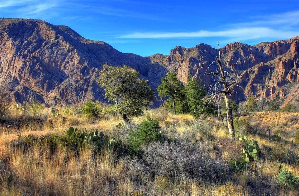 big-bend-national-park-347398_960_720