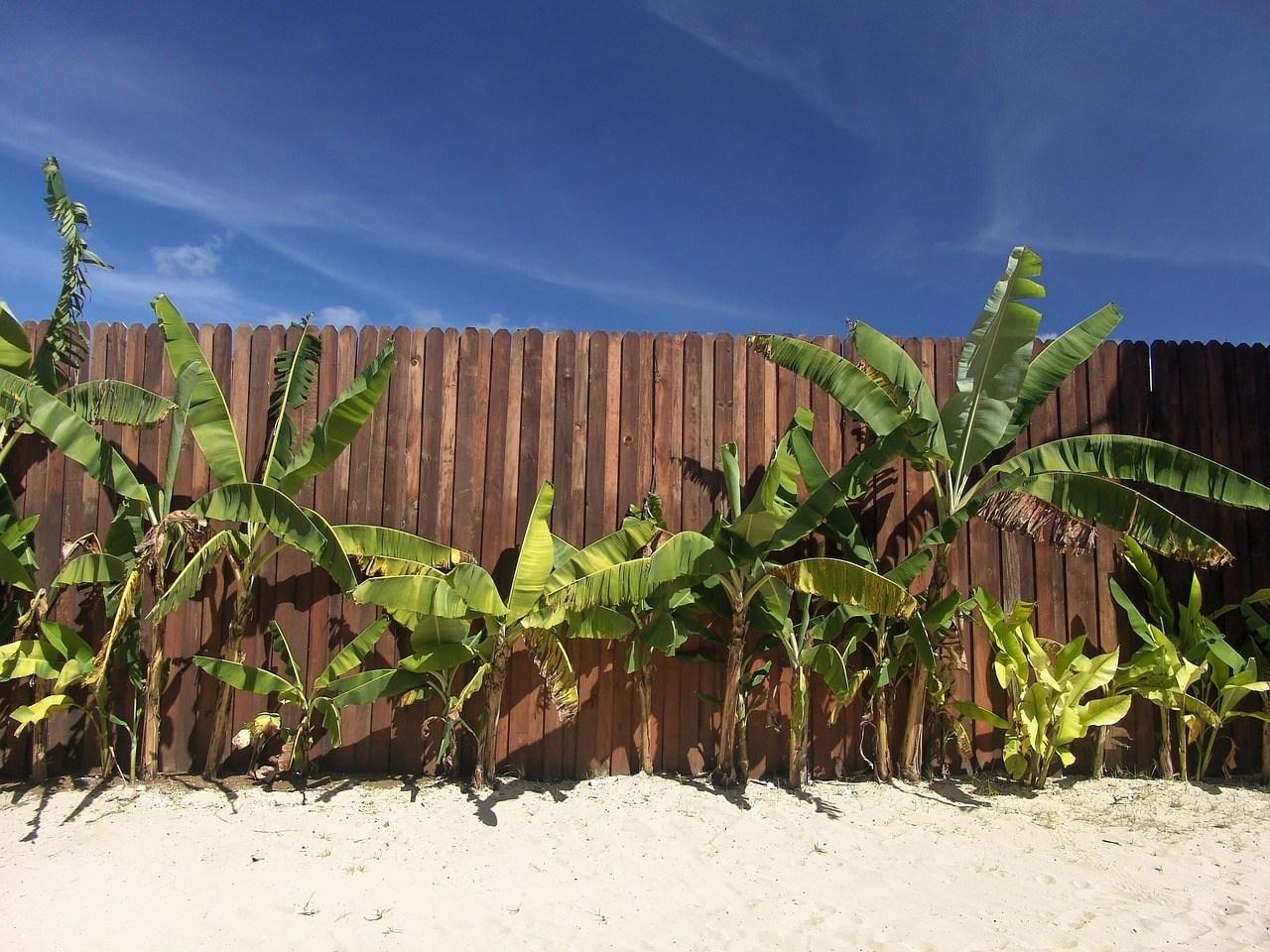 beach-1029007_1280