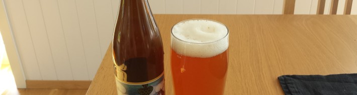 Grown-up Travel Guide Beer Diary - Day 164: Sorachi Sess from Haandbryggeriet of Drammen, Norway