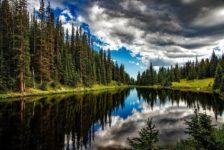 lake-irene-1679708_1280
